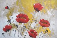 Titelbild des Albums: Archiv-Blumen, Blumenbilder