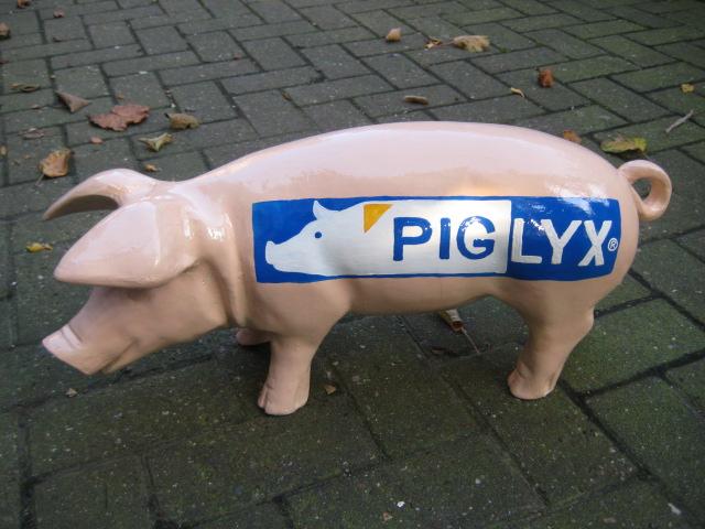 PIG-LYX, Sonderanfertigung