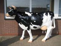 Titelbild des Albums: Melkkuh, Kühe zum Melken