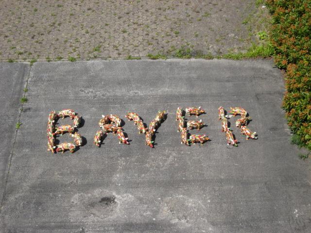 Bayer Healthcare, Serienfertigung