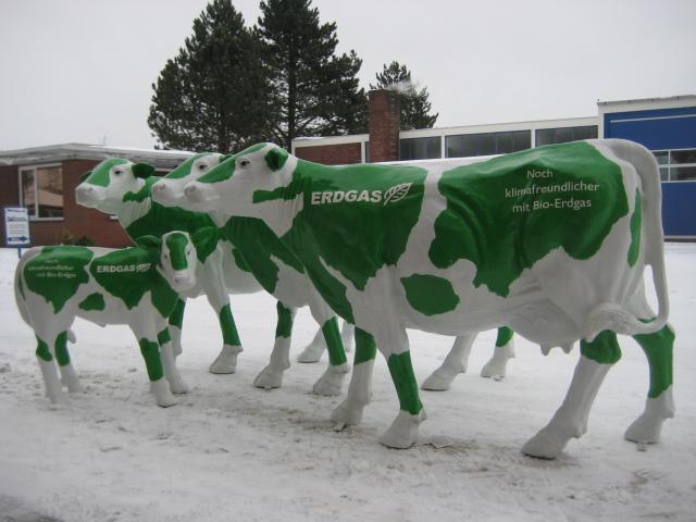 Erdgas-Kühe für den BdEW