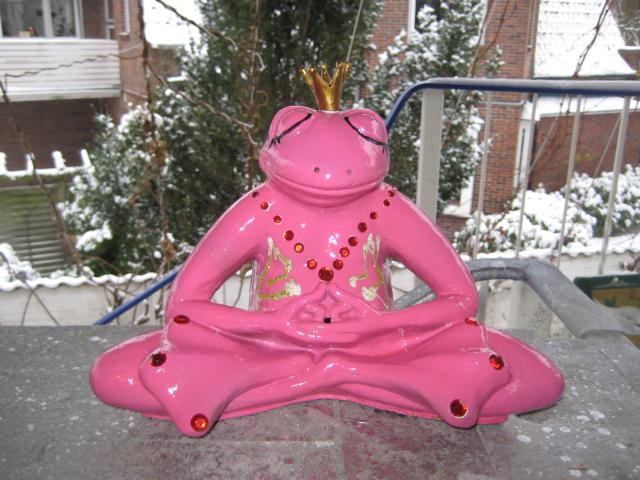 rosa Yogafrosch