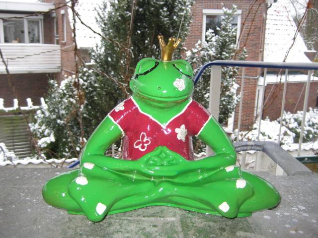 laubgrüner Yogafrosch