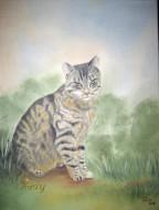 Archiv-Tiere & Kinder, Portrait
