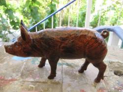 Fledermaus- Schweine_9