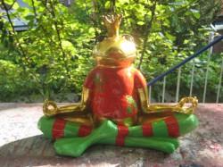 Frösche und Froschkönige_10