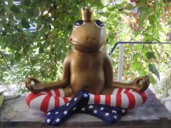 Frosch meditierend_21