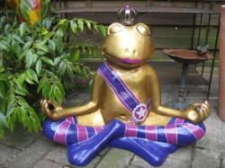 Frosch meditierend_22