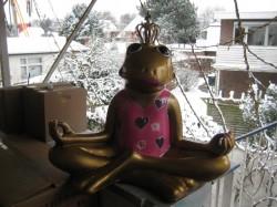 Frosch meditierend_23