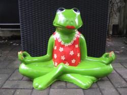 Frosch meditierend_25