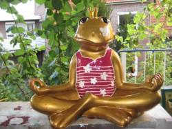 Frosch meditierend_29
