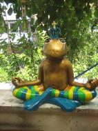 Frosch meditierend_30