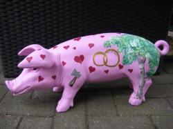 Große Schweine_422