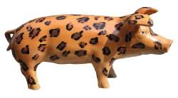 Große Schweine_424