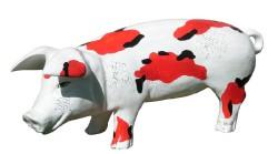 Große Schweine_427