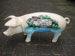 Große Schweine_432
