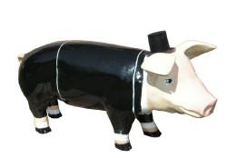Große Schweine_433