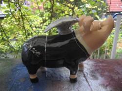 Grosses Hummel-Schwein_24