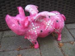Hummel-Schweine_154