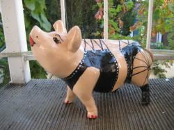 Hummel-Schweine_158