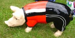 Kleine Schweine_315
