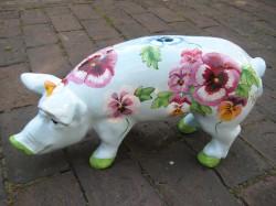 Kleine Schweine_316