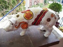 Kleine Schweine_322