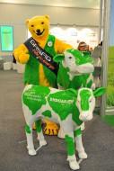 Lebensgrosse Kuh- Kühe in Lebensgröße