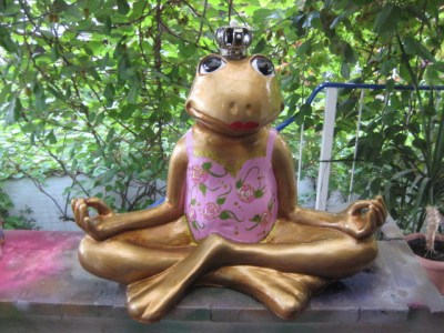 Yoga-Frosch im rosa Dress